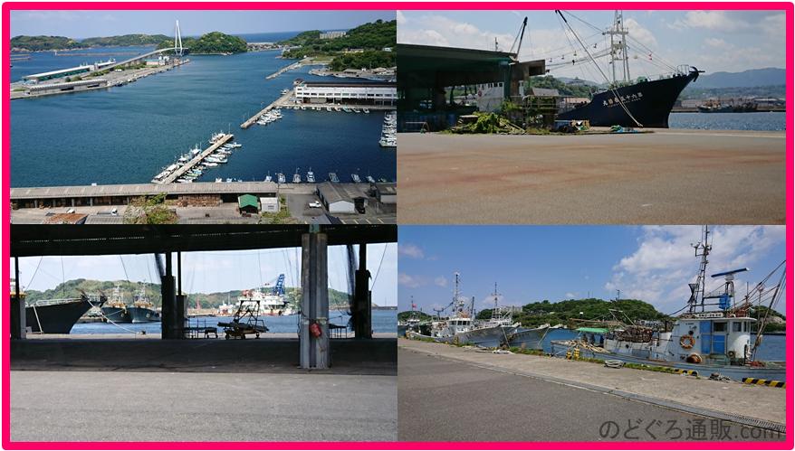 のどぐろが獲れる浜田漁港